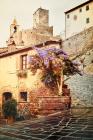 Castiglione_della_Pescaia_4225